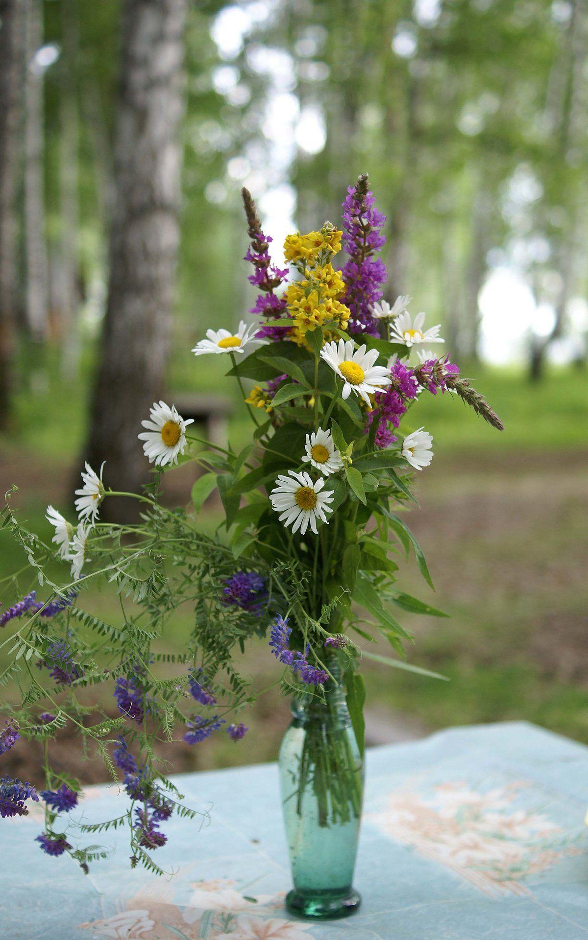 Букет полевые цветы картинка