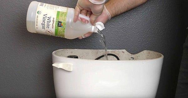 Él vierte un chorro de vinagre en el tanque del inodoro. Segundo después… ¡Esto es brillante!