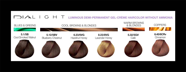 L 39 or al professionnel dialight 6 new shades november 2014 all about the salon life - Loreal salon colour chart ...