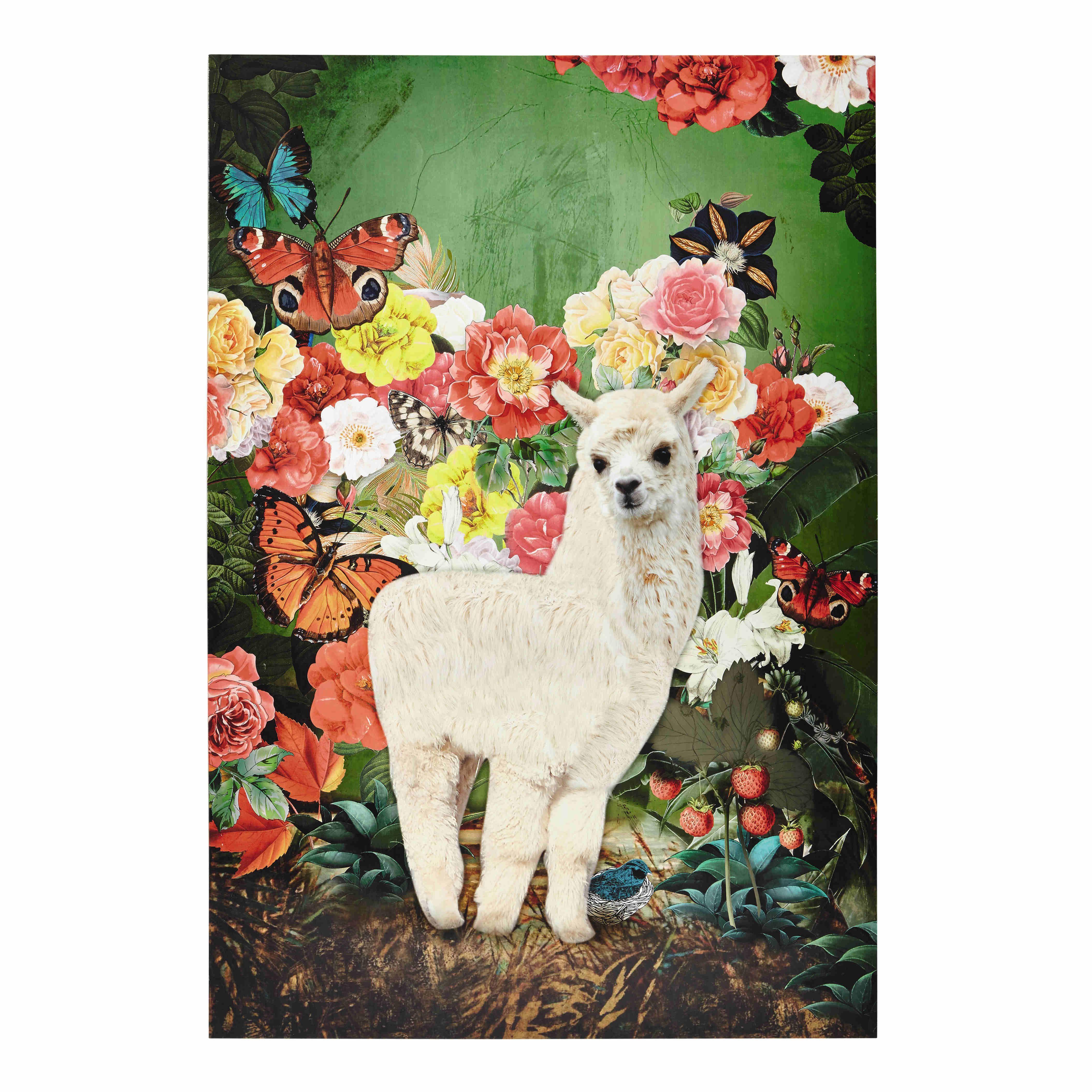Leinwandbild SANTA ROSA mit Lama, 90 x 130 cm Jetzt bestellen unter ...