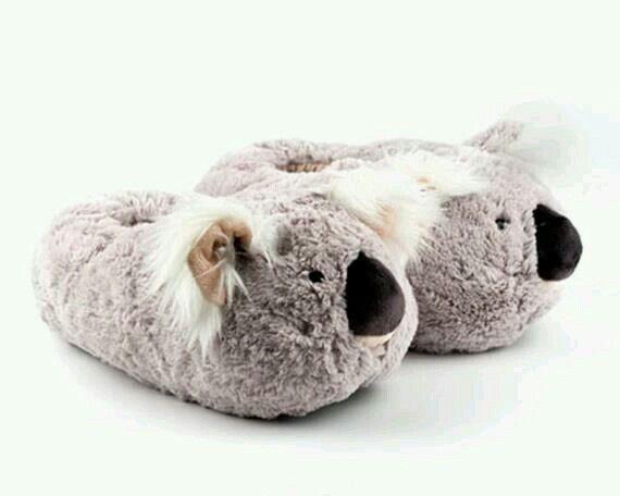 Photo of Eu quero amor coalas…
