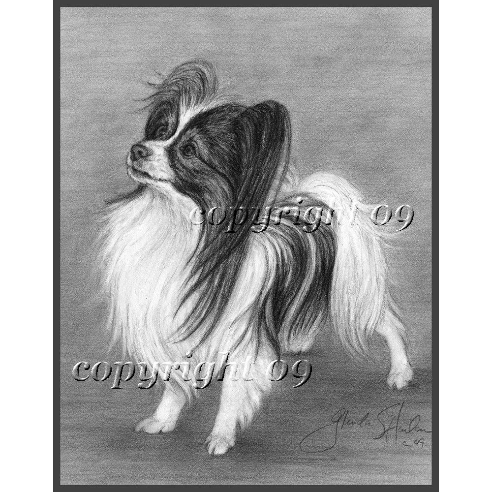 Papillon Dog Fine Art Note Cards Four Pack Papillon Dog Dogs Papillon Puppy [ 1000 x 1000 Pixel ]