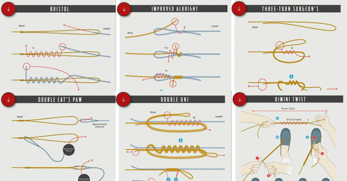 Best Fishing Knots from 7 Professional Skippers Best