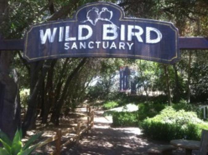 Myrtle Creek Botanical Gardens & Nursery Fallbrook Ca