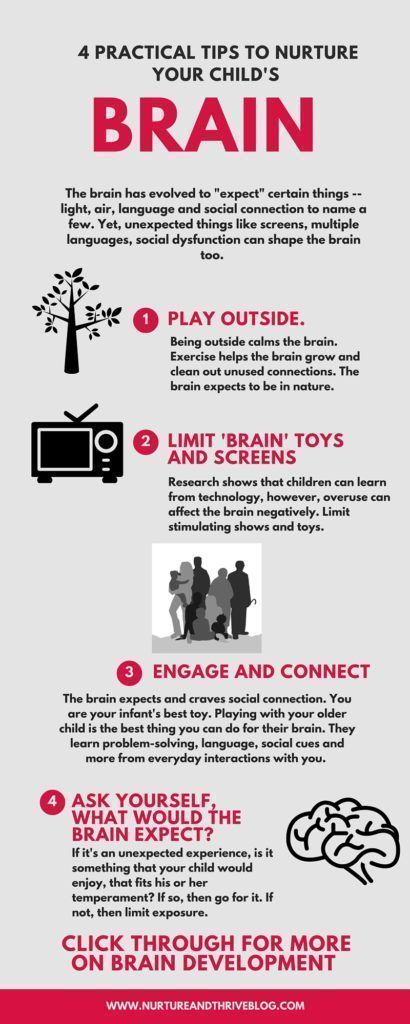 A Normal Wild Environment is Best for Your Childs Brain Development How to nurture your ch  A Normal Wild Environment is Best for Your Childs Brain Development How to nur...