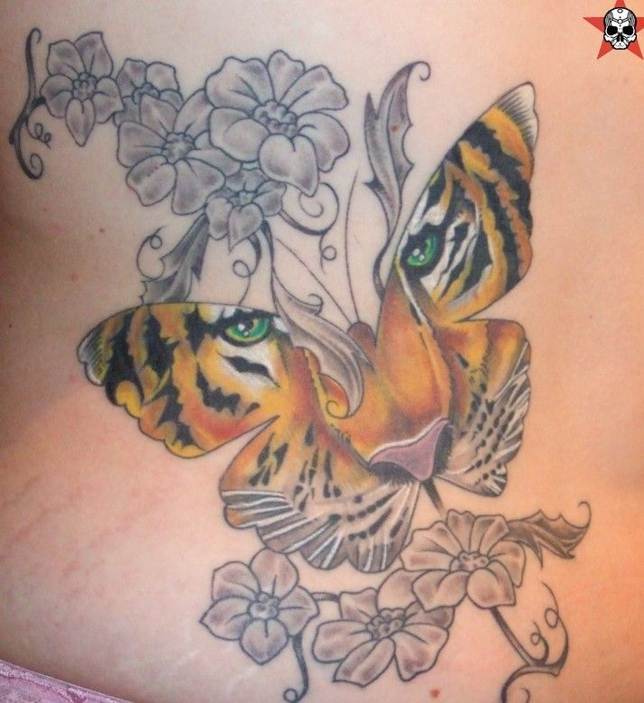 butterfly with tiger face