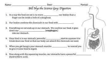 Bill Nye Digestion Worksheet - worksheet
