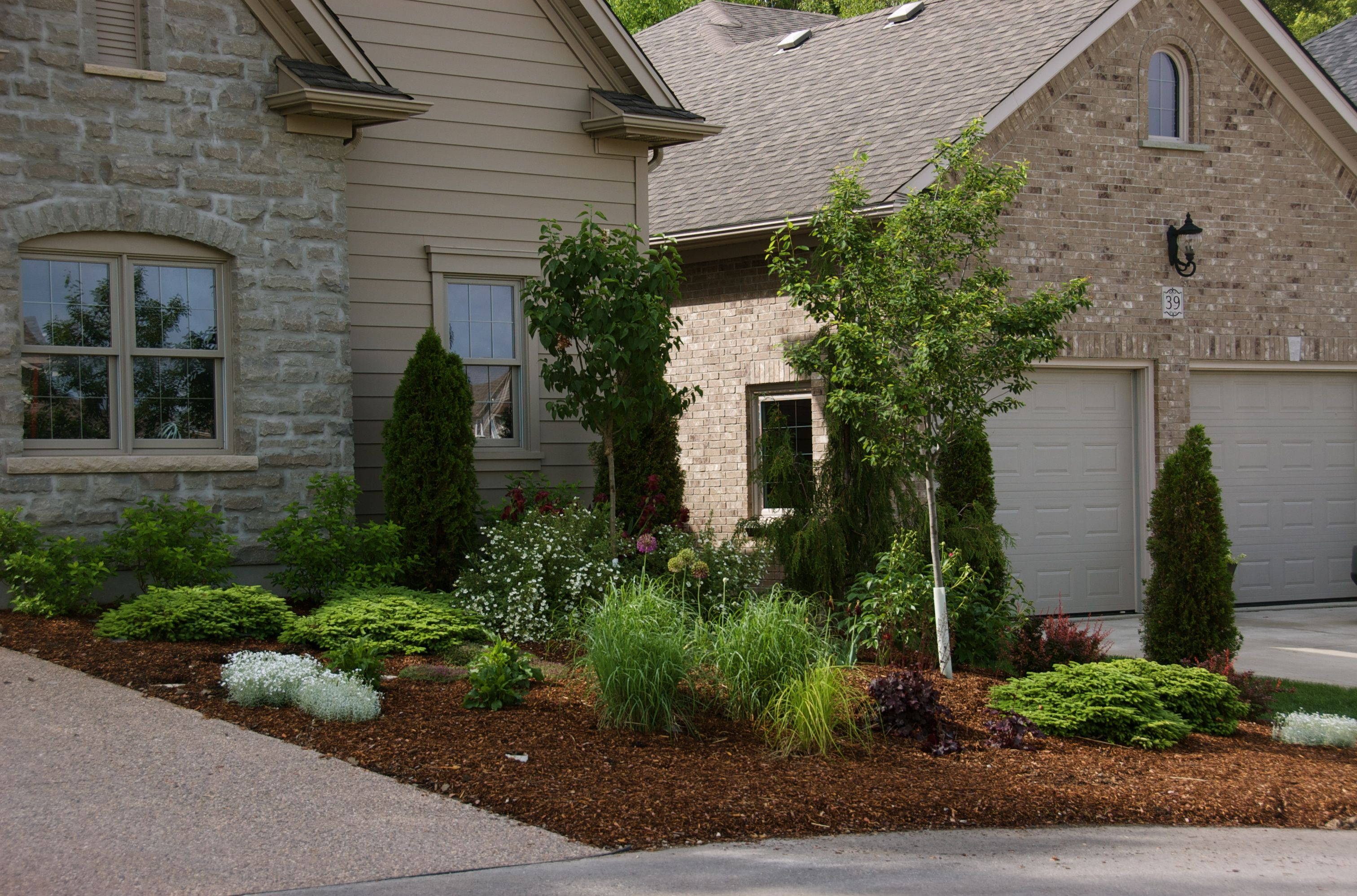 Idea for no-mow landscape in front of property. | Small ... on No Mow Backyard Ideas id=28301