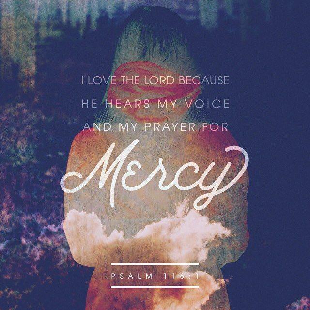 #1marvelousmar #bibleapp #verseoftheday