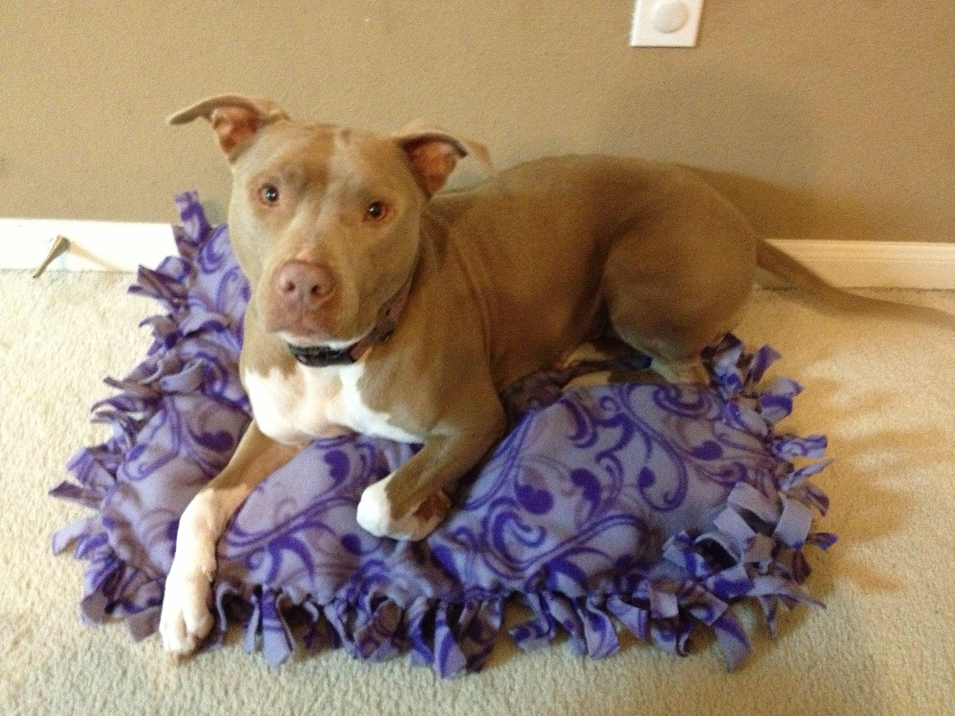 No sew dog bed! Fleece fabric (4yd), One .75 cubic feet