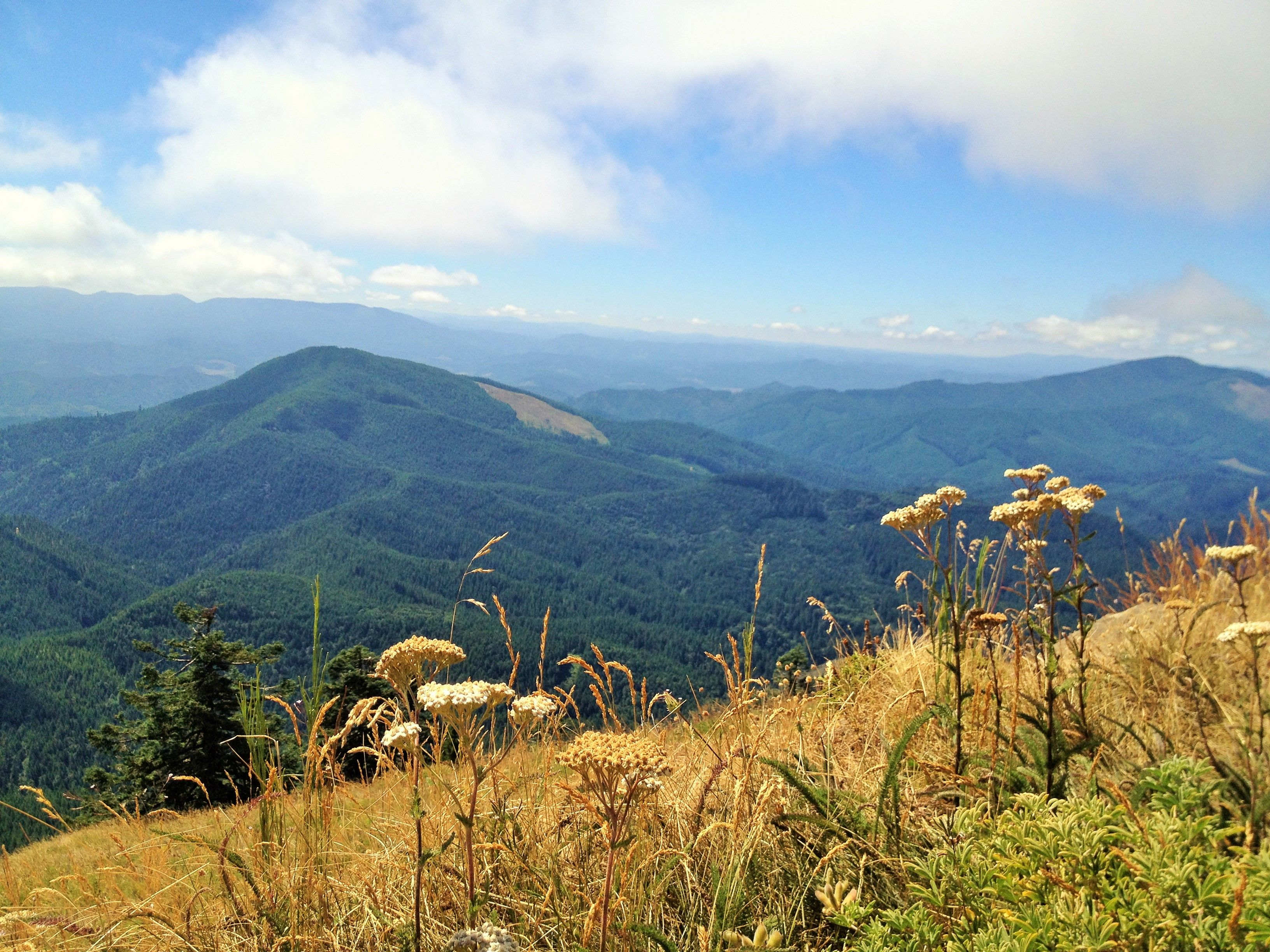 Mary's Peak would be a fun and beautiful day hike.