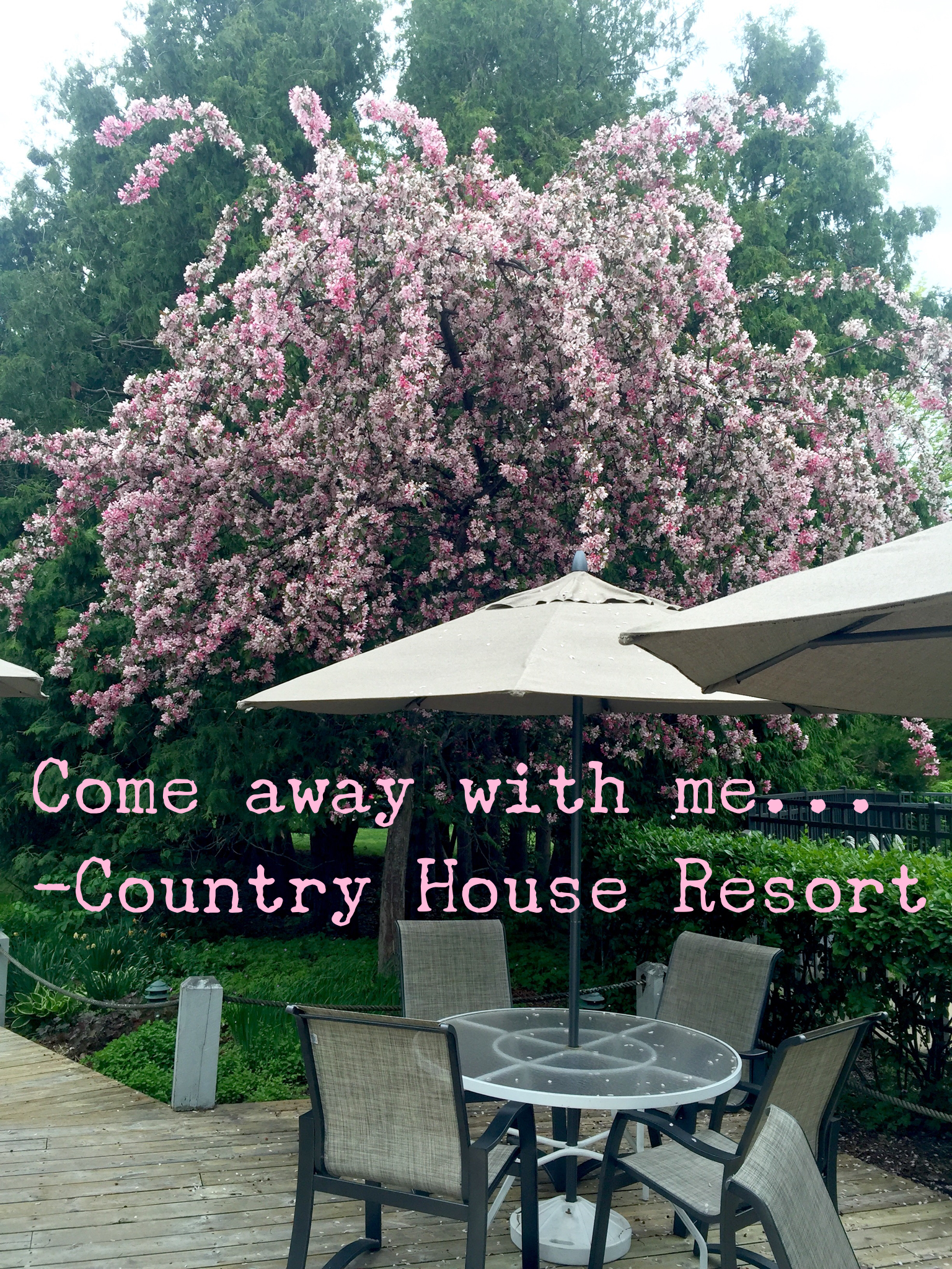 Beauty Every Where You Look At The Country House Resort Our