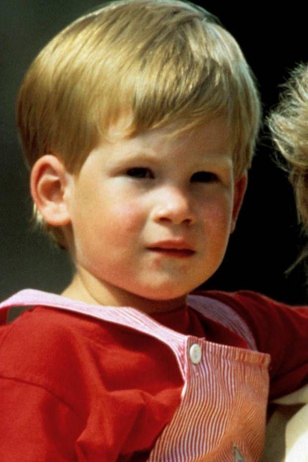Prinz Harry hat nichts aus Dianas Fehlern gelernt