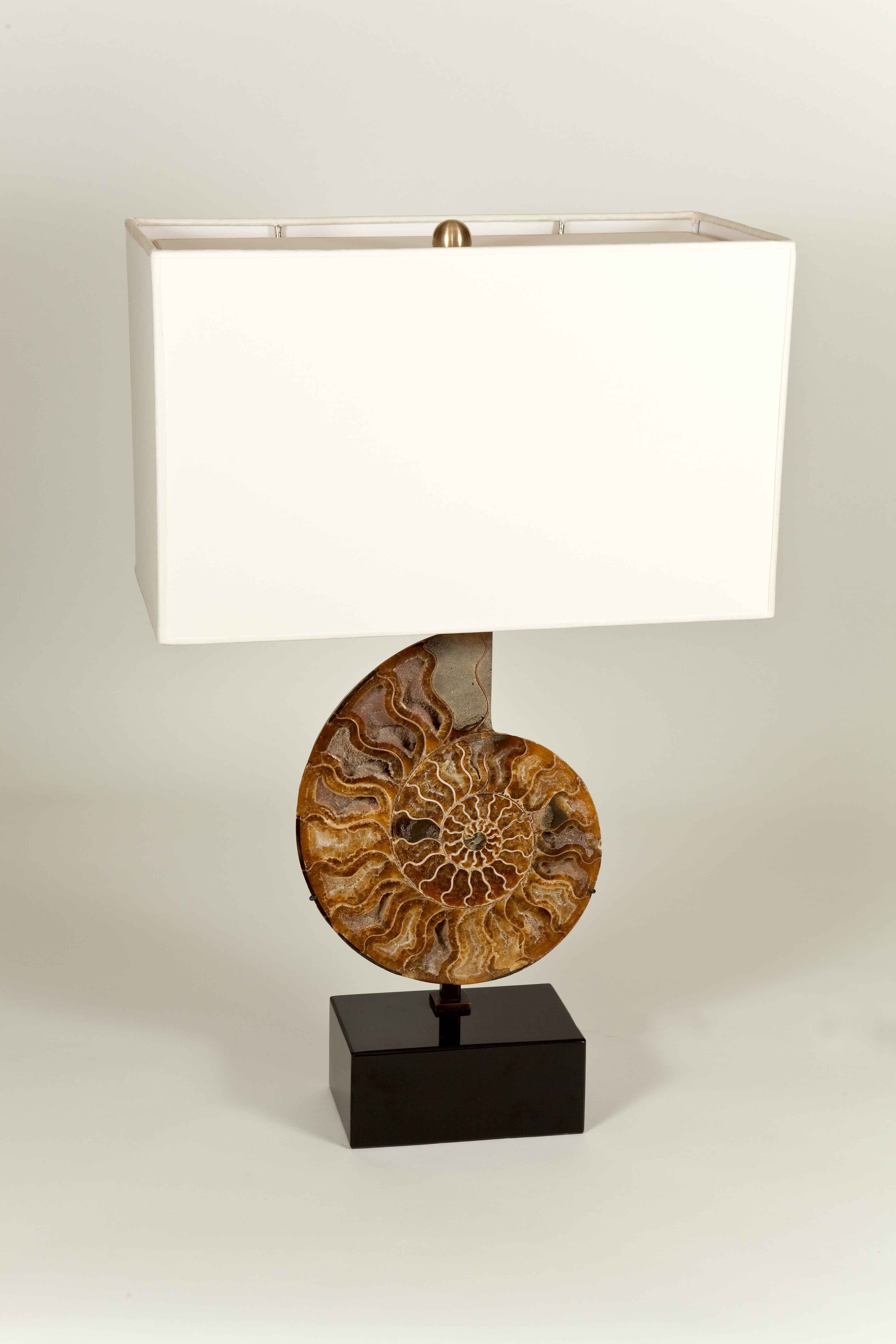 Ammonite Fossil Table Lamp Linen Shade And A Black Marble Base