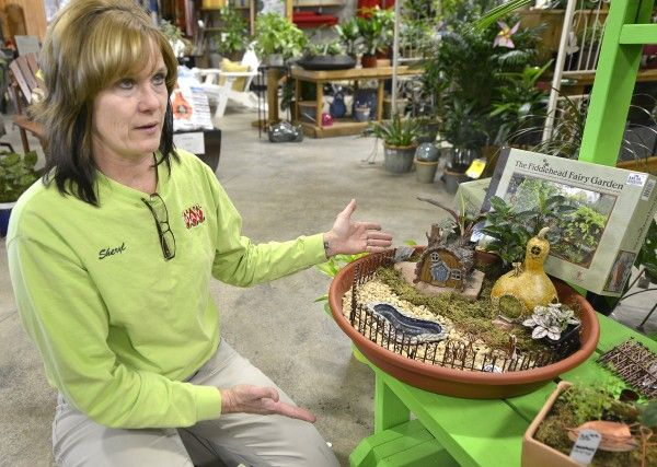 Tiny Treasures: Fairy gardens provide an indoor forest