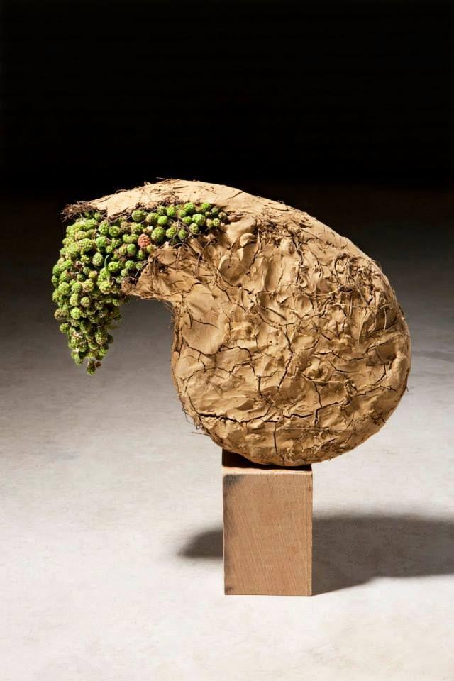 Bramen en gebroken klei, Staat in International Floral Art