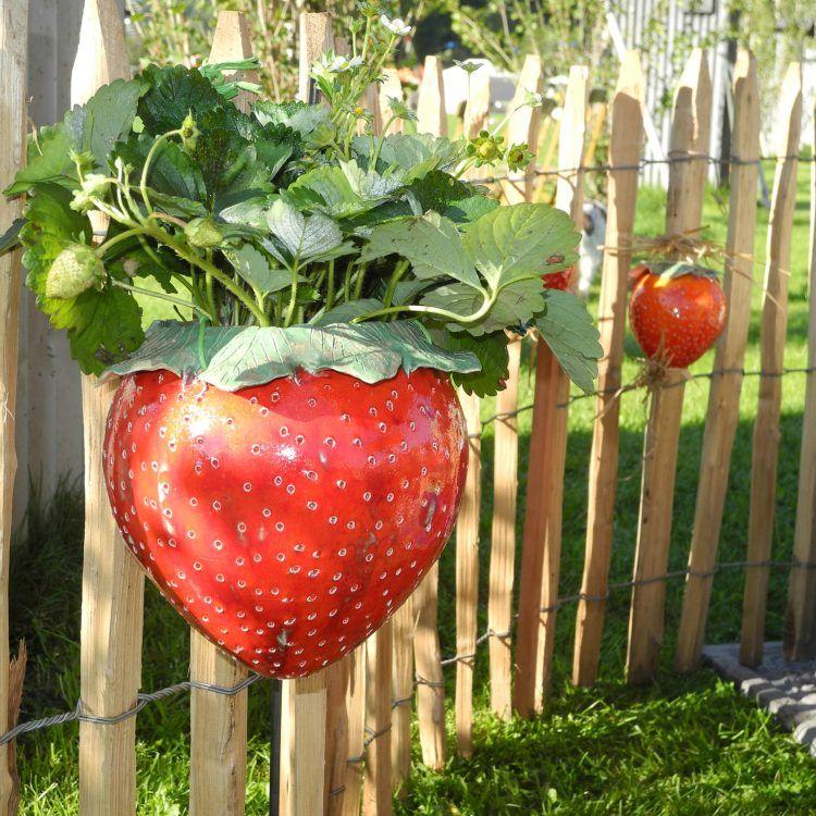 Erdbeere Keramik Blumenampel | Pinterest | Blumenampel, Erdbeeren ...