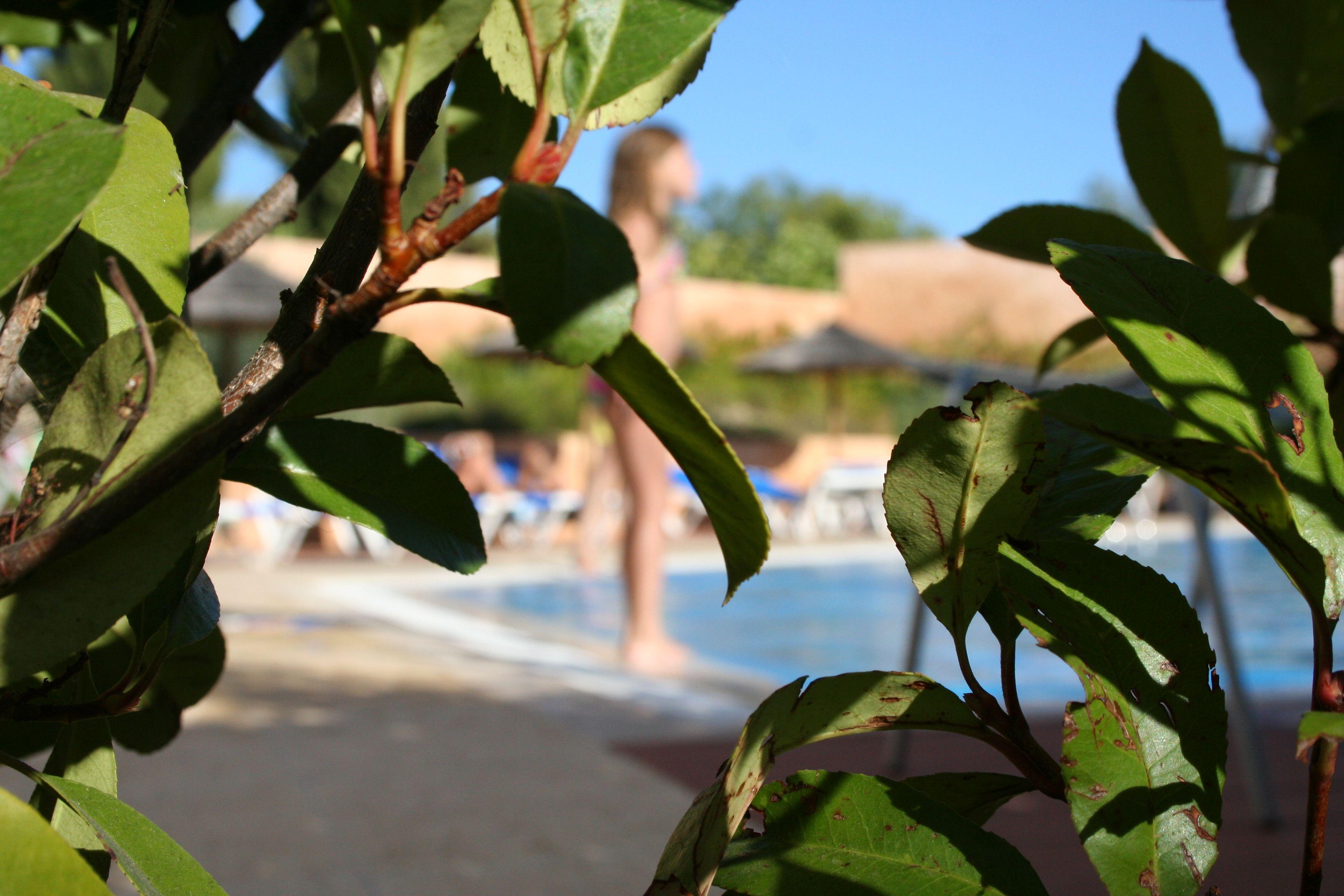 or nive pool Vilãs