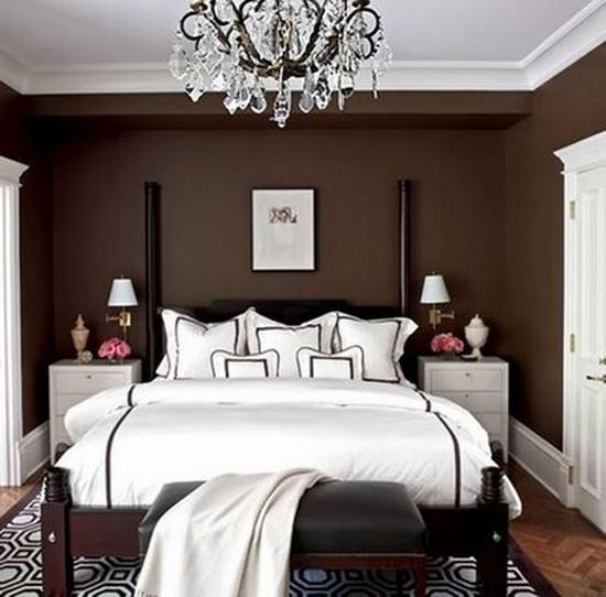 Chocolate Brown Accent Wall Master Bedroom