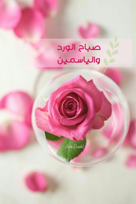 Sara Elwakil صباح الورد Flower Painting Canvas Good Morning Greetings Morning Greeting