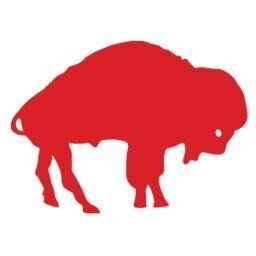 Buffalo Bills throwback logo. Part of the reason I became a fan  for cheap