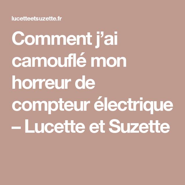 Comment j'ai camouflé mon horreur de compteur électrique – Lucette et Suzette