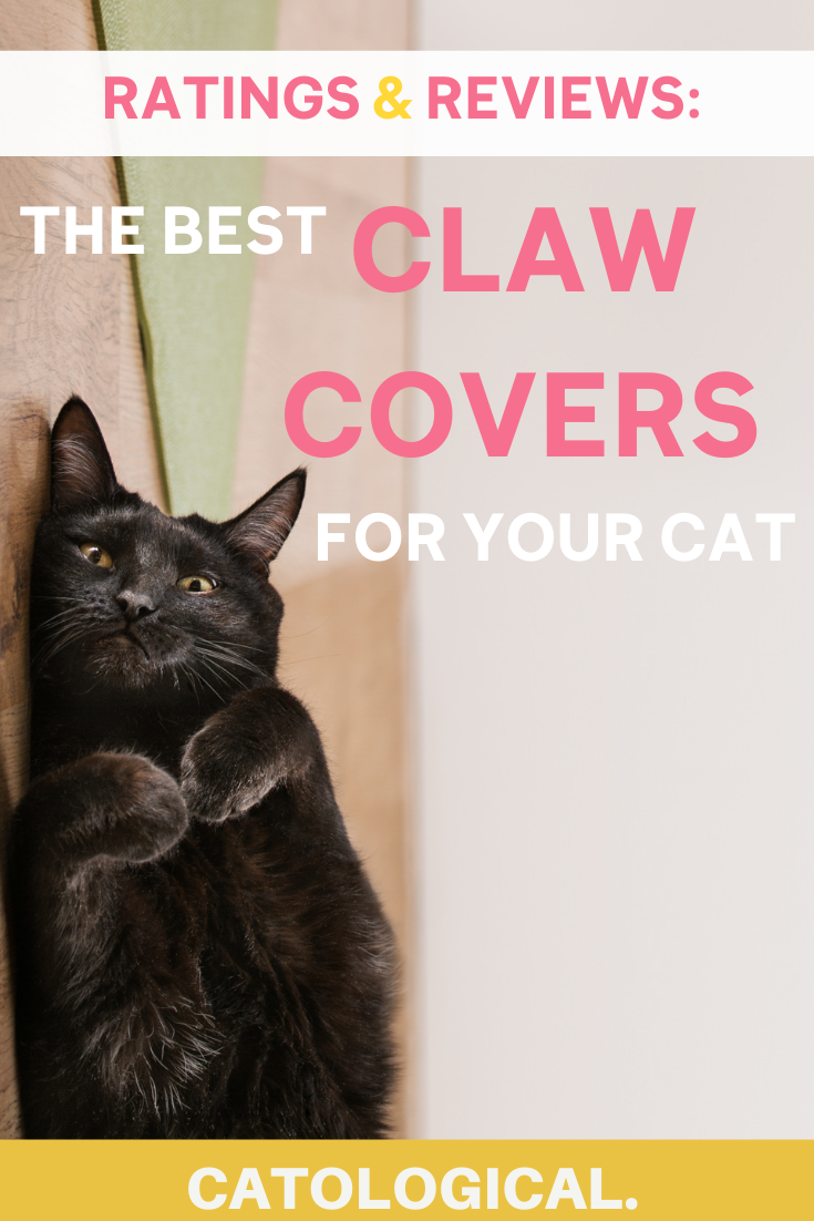 Best Cat Nail Caps Reviewed Rating Soft Paws Claw Covers For Kitties In 2020 Cat Love Quotes Soft Paws Cats