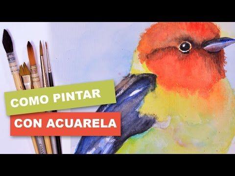 Como Pintar Facil Un Pajaro Con Acuarela Youtube Acuarela
