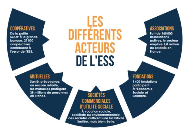 Les Differents Acteurs De L Ess Economie Sociale Et Solidaire Economie Entrepreneuriat