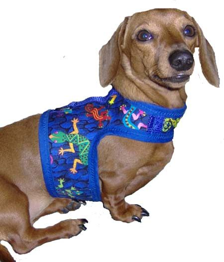 Frankie Has Several Of These Hug A Dog Harnesses From Dachshund