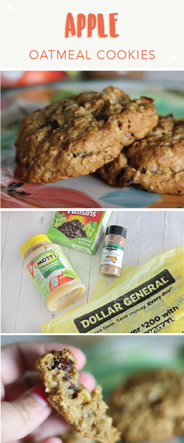 Cranberry Apple Oatmeal Cookies | Recipe | Unsweetened applesauce ...