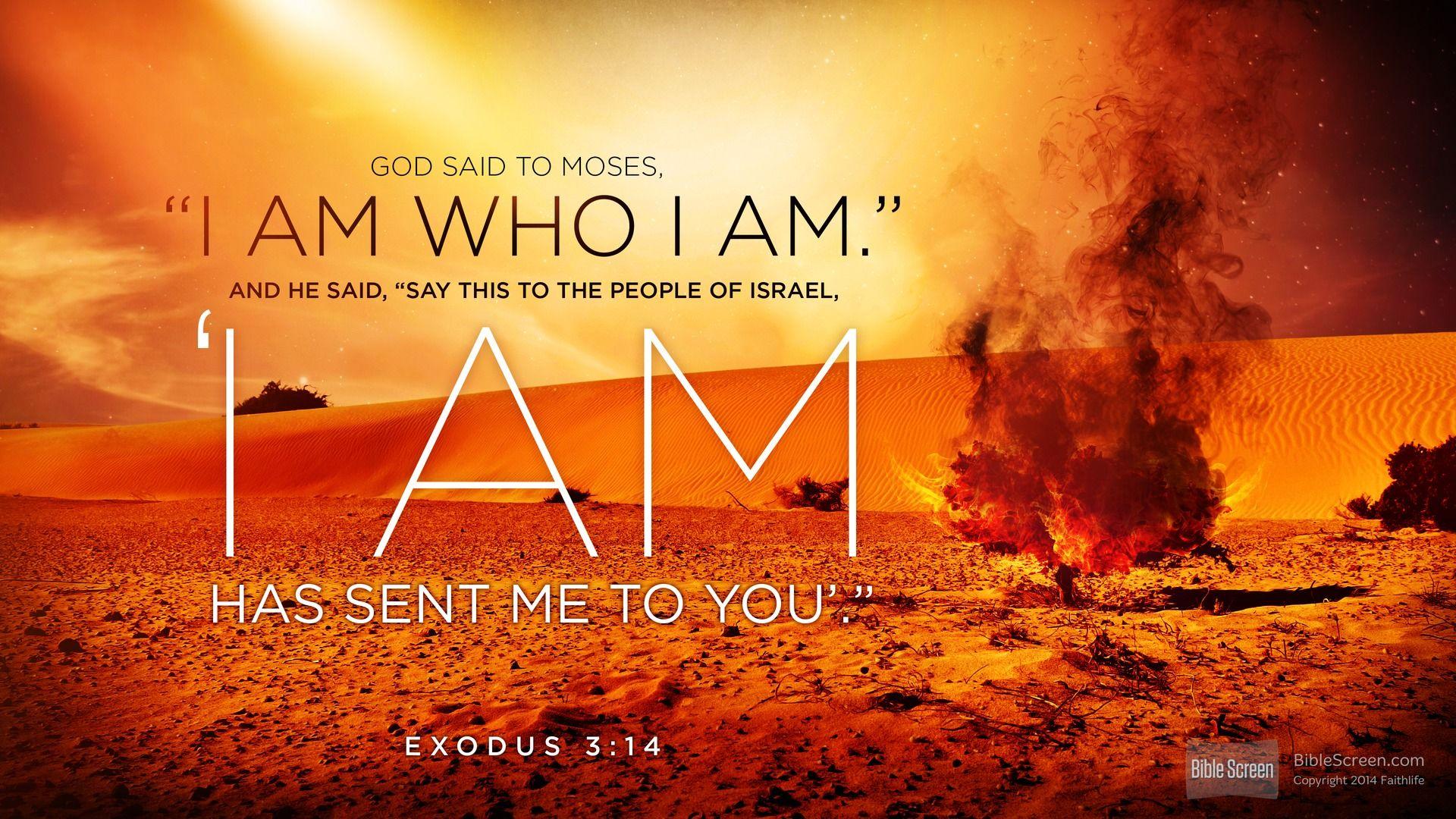 Exodus Quotes