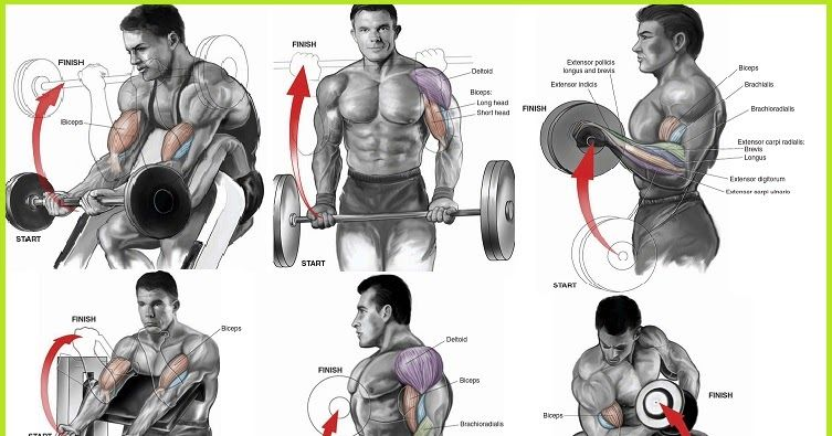 Killer Bicep Workout Will Explode Your Arm Size
