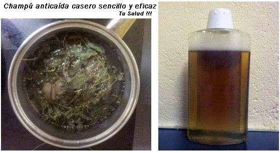 TU SALUD: Champú anticaída casero sencillo y eficaz