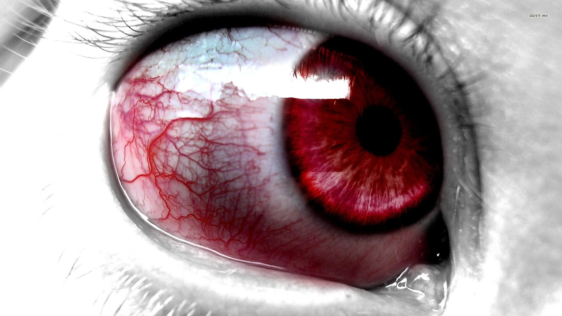 bloody eyes hd wallpaper - blood wallpaper eye wallpaper | wallpaper