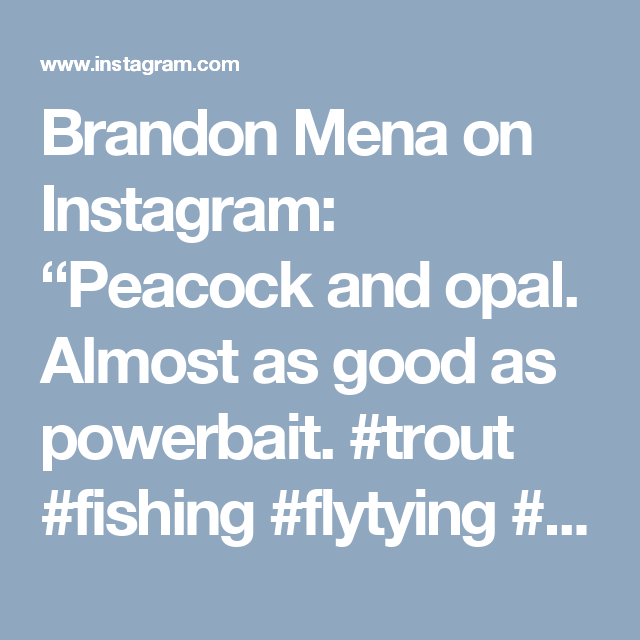 """Brandon Mena on Instagram: """"Peacock and opal. Almost as good as powerbait. #trout #fishing #flytying #troutbum #flyfishing #thetugsthedrug #findyourwater #flyfishfood…"""""""