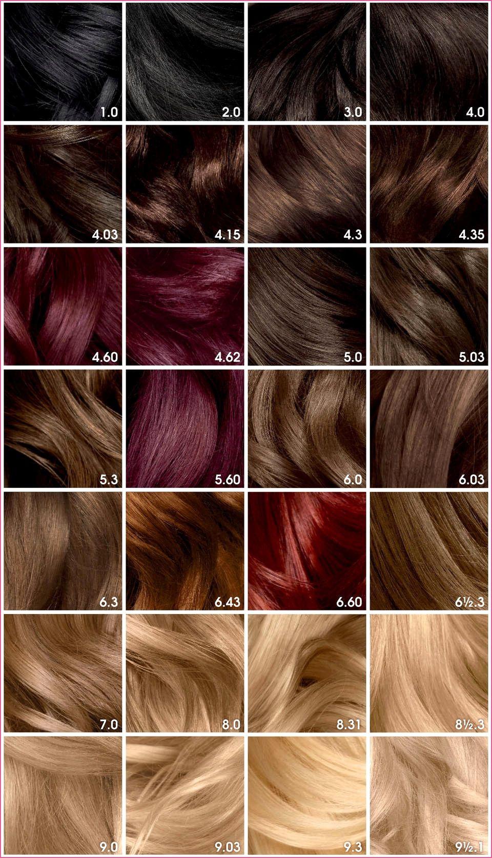Burgundy Brown Hair Color Olia Hair Color Garnier Hair Color Hair Color Chart