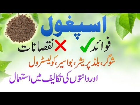 Ispaghol Husk Benefits And Disadvantages As Home Remedy In Urdu
