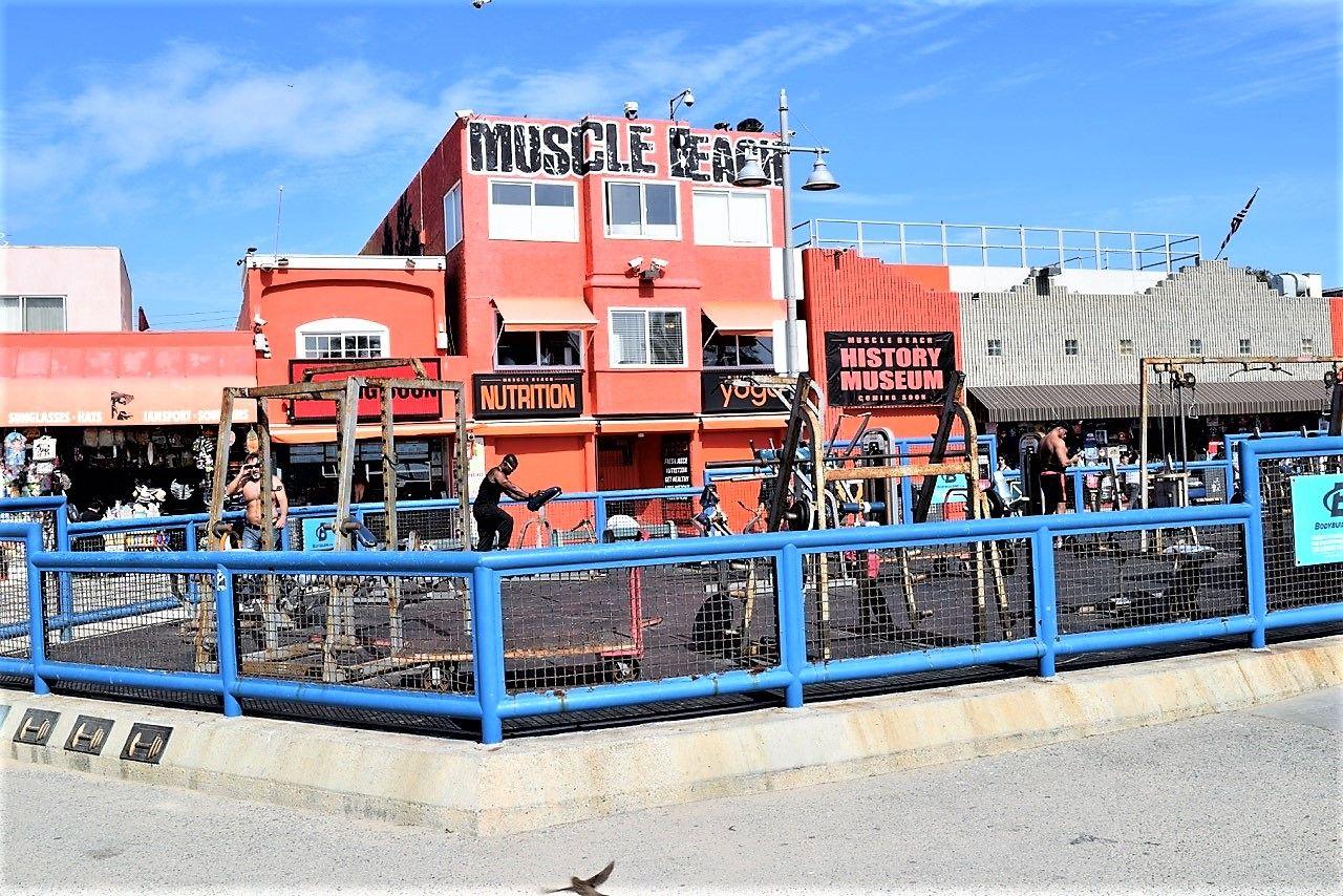 Picture Of Muscle Beach Venice La California