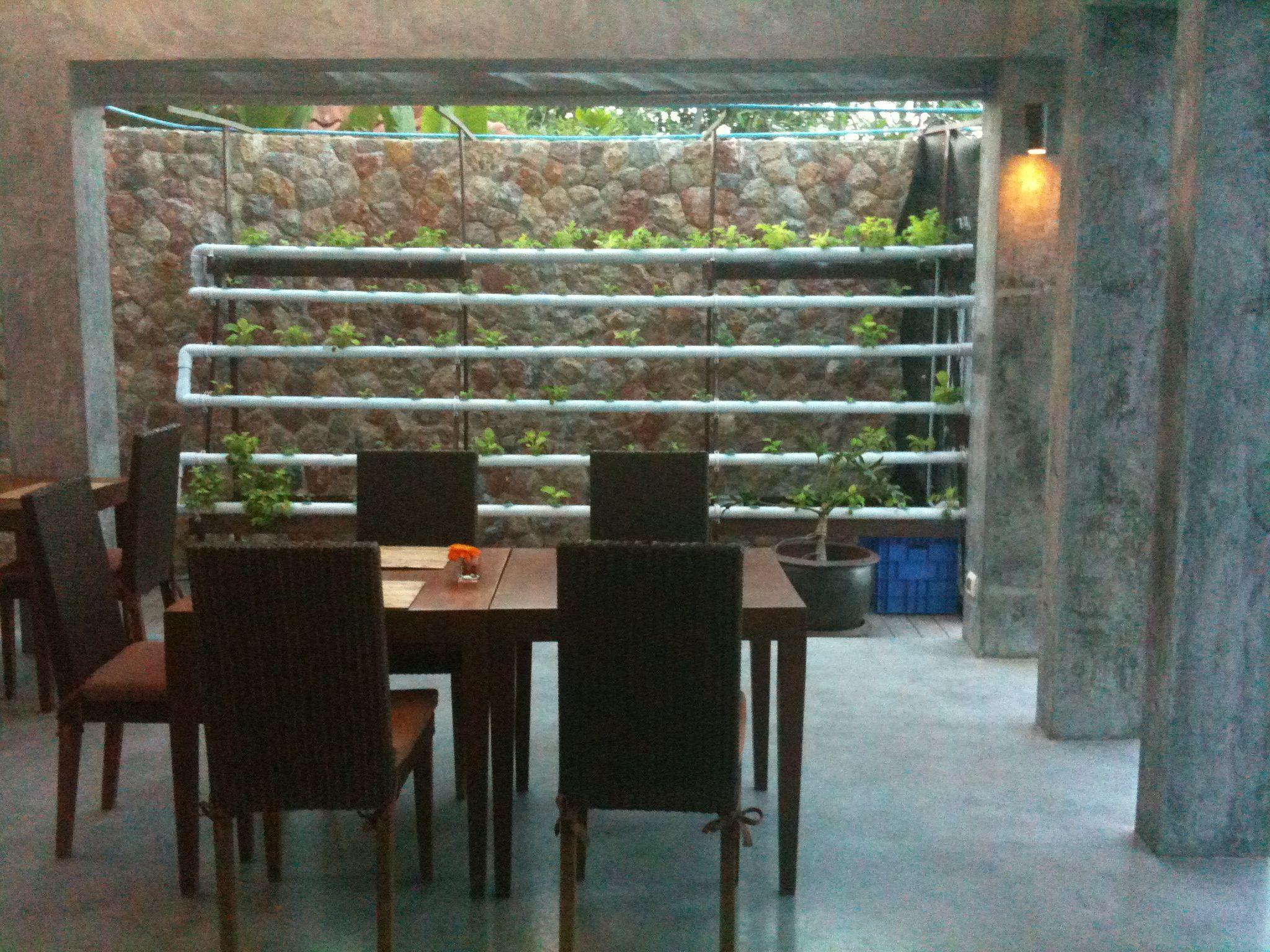 Restaurant hydro garden Hydroponic Display Gardens
