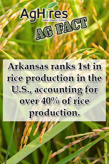 Arkansas Facts In 2020 Agriculture Facts Agriculture Jobs Facts