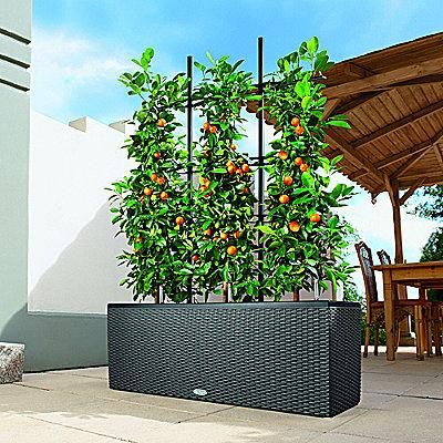 Self Watering Woven Patio Planter Balcony Planters Apartment Garden Patio Planters
