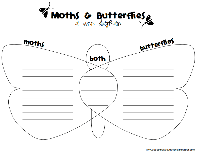 Moths Butterflies Venn Diagrampdf Google Drive Teaching