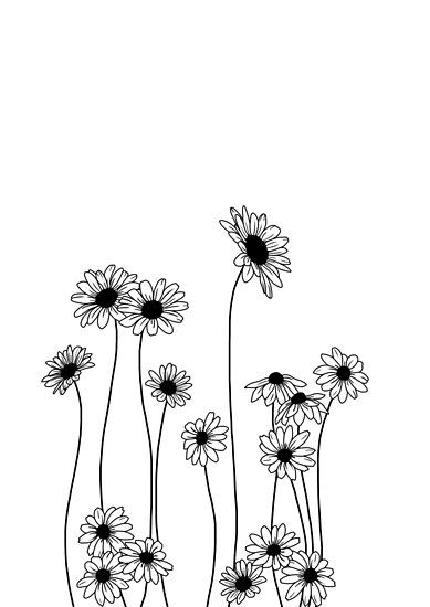 Daisy Botanical Line Drawing Poster By Thecolourstudy En 2020 Margaritas Dibujo Dibujo Lineal Dibujos De Flores