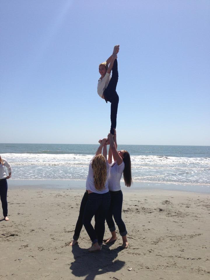 needle on the beach