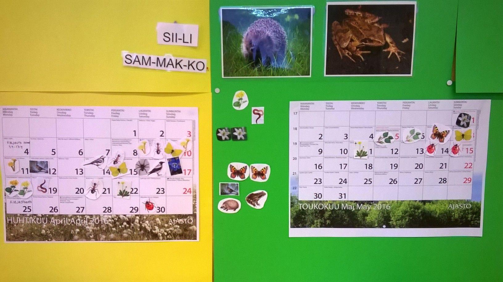 Luokan yhteistä kevätseurantaa kuvilla. Lajeja voi lisätä aina kun opitaan uusia.