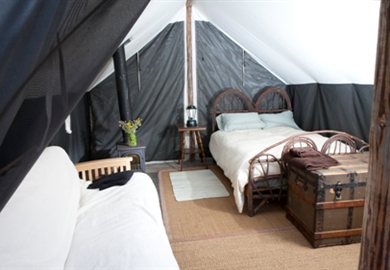 Choose the Farm Stay Studio Deluxe Rustic Wall Tents or the forested c&ground with tent sites nestled among & Inside The Wall Tent. Bed u0026 Couch | Living here | Pinterest | Wall ...