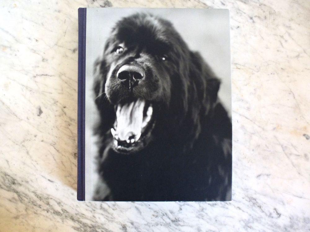 Gentle Giants A Book of Newfoundlands by Bruce Weber
