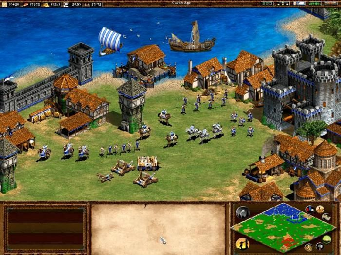 Playing With The Vikings Age Of Empires Ii With Images Age