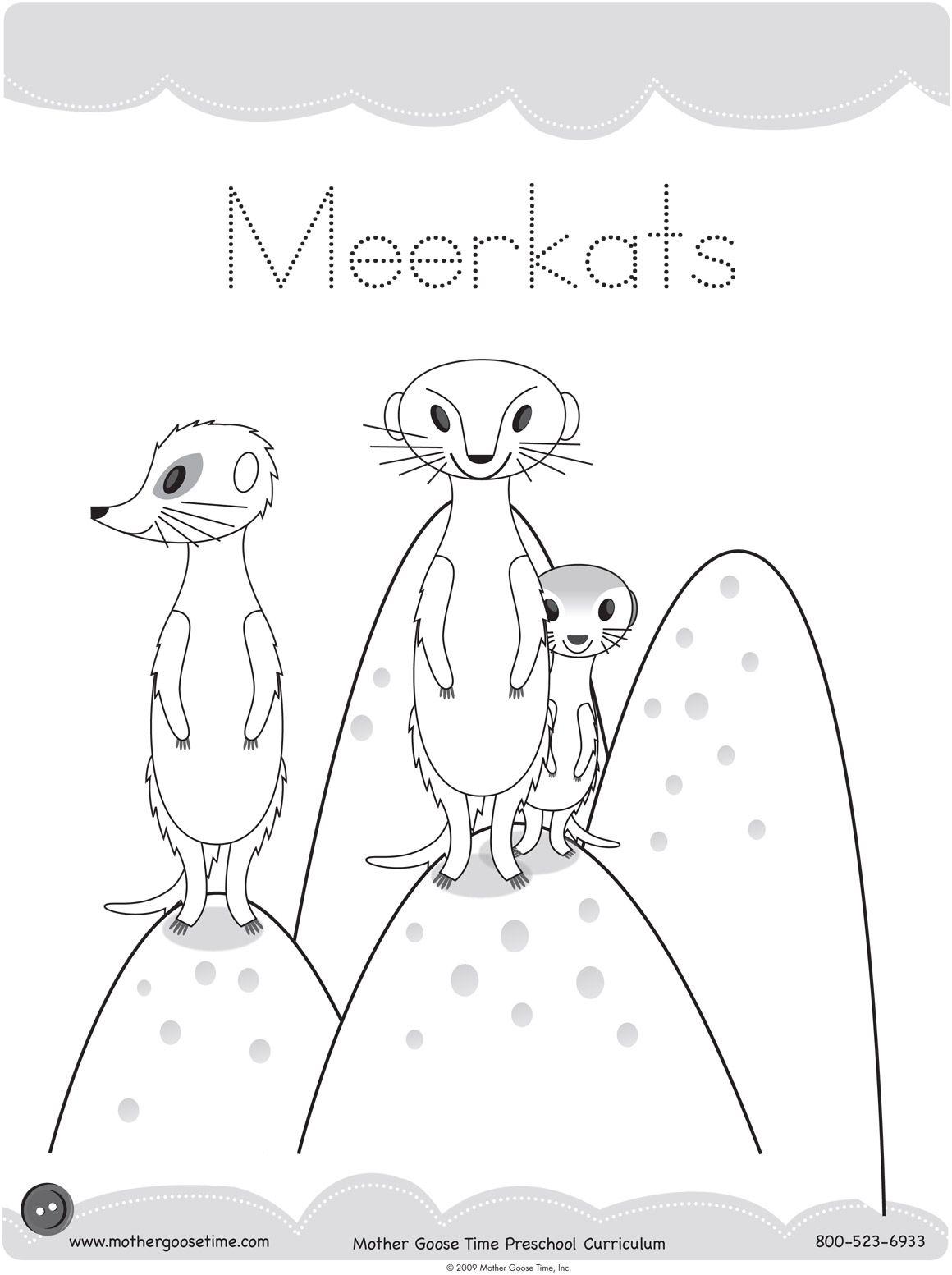Meerkat Coloring Pages Printable